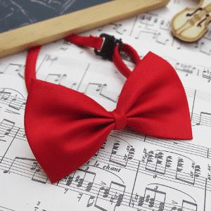Bow tie - PinkyBears Fashion Boutique